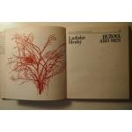 Hrubý L.  - Ružová ako sen